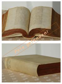 1788 - 1823_Webseite_Pate gefunden