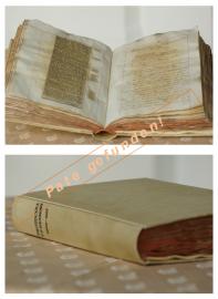 1869 - 1893_Webseite_Pate gefunden